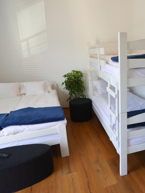 Bovansko Jezero Vila Vesović apartman 01 005