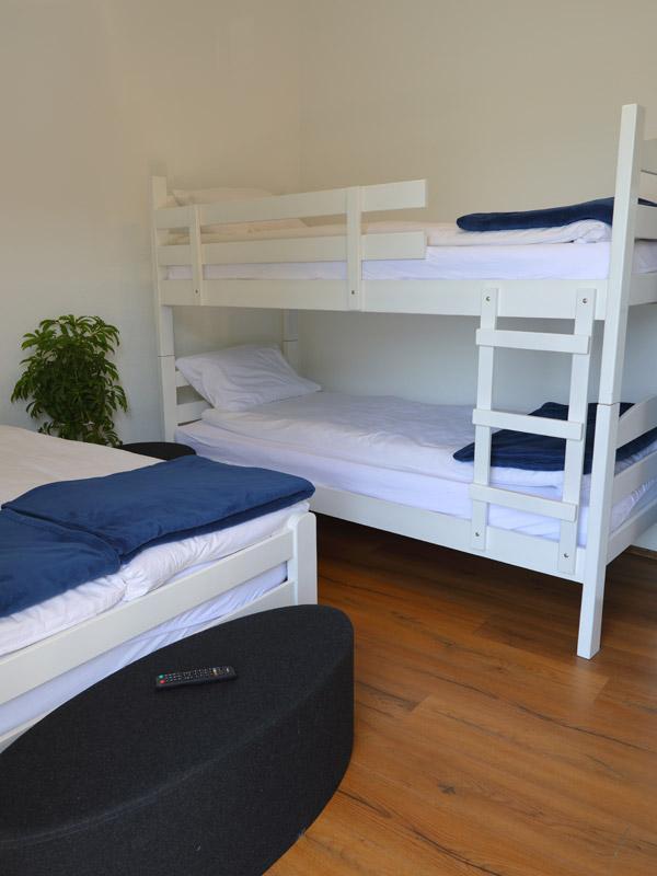 Bovansko Jezero Vila Vesović apartman 01 008
